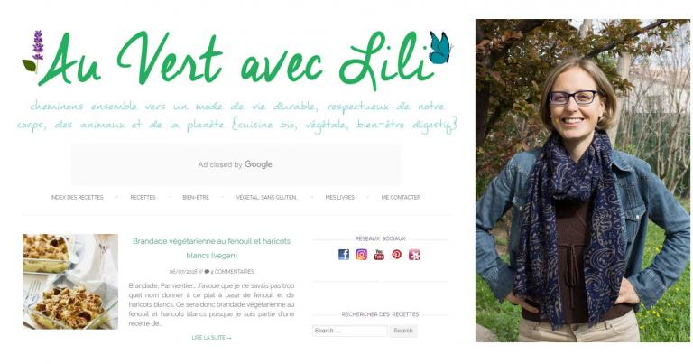 Interview d'Alice auteure du blog au vert avec Lili Danival 2018